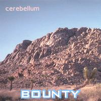 BOUNTY picture