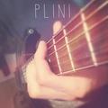 PLINI picture