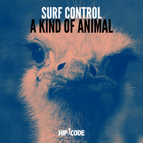 SURF CONTROL picture