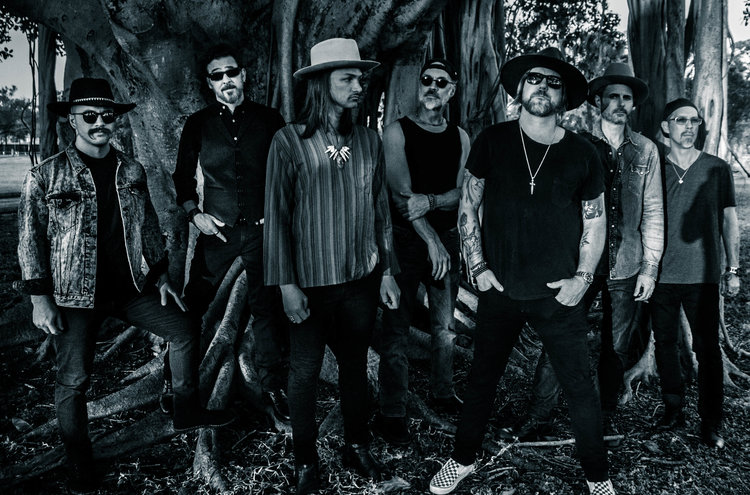 THE ALLMAN BETTS BAND picture