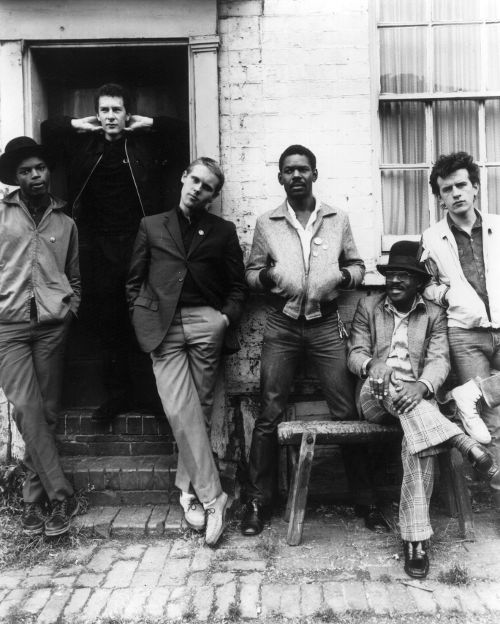 THE BEAT (THE ENGLISH BEAT) picture