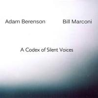 ADAM BERENSON - Adam Berenson & Bill Marconi : A Codex Of Silent Voices cover