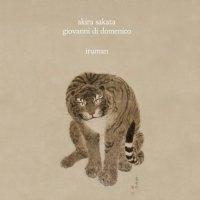 AKIRA SAKATA - Akira Sakata & Giovanni Di Domenico: Iruman cover