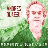 ANDRÉS OLAEGUI - Espiritu Salvaje cover