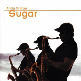 ANDY SNITZER - Sugar cover