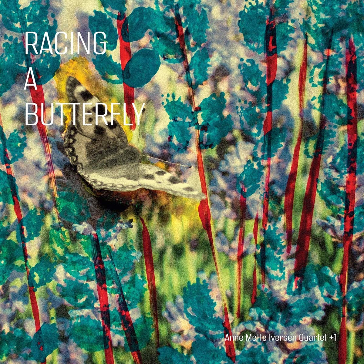 ANNE METTE IVERSEN - Anne Mette Iversen Quartet+1 : Racing a Butterfly cover