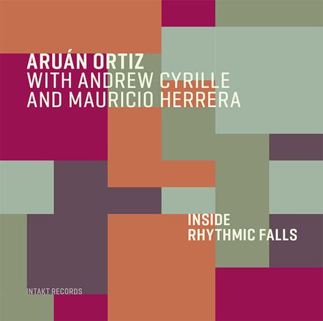 ARUÁN ORTIZ - Inside Of Rhythmic Falls cover