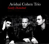 AVISHAI COHEN (BASS) - Gently Disturbed cover