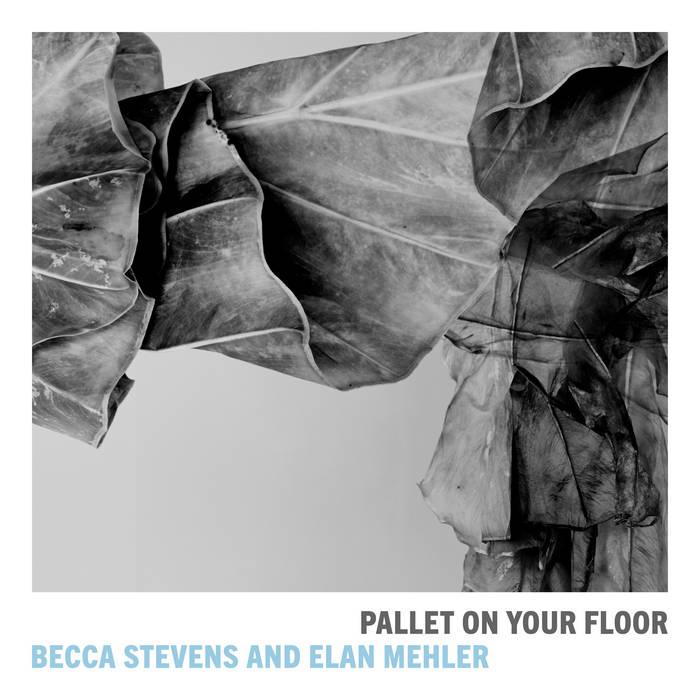 BECCA STEVENS - Becca Stevens & Elan Mehler : Pallet On Your Floor cover