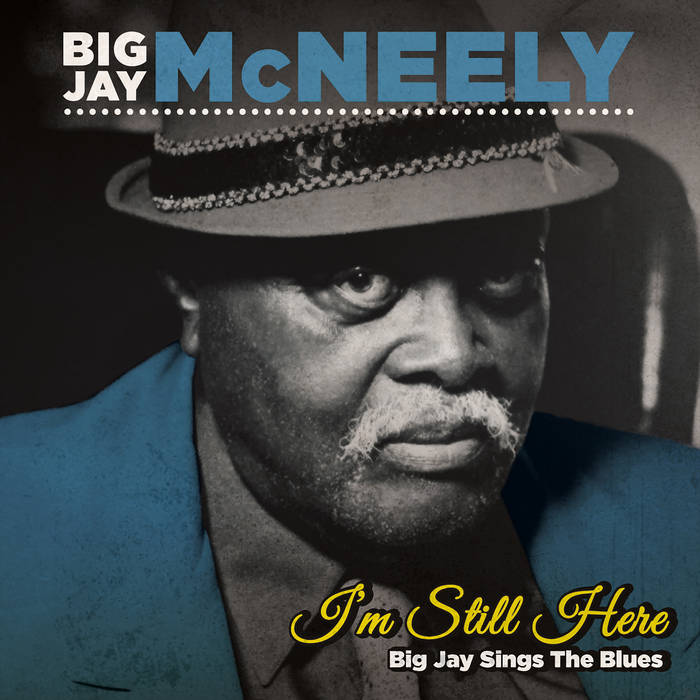 BIG JAY MCNEELY - I'm Still Here – Big Jay Sings the Blues cover