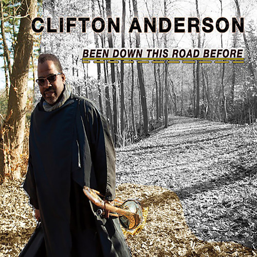 CLIFTON ANDERSON - Been Down This Road Before cover