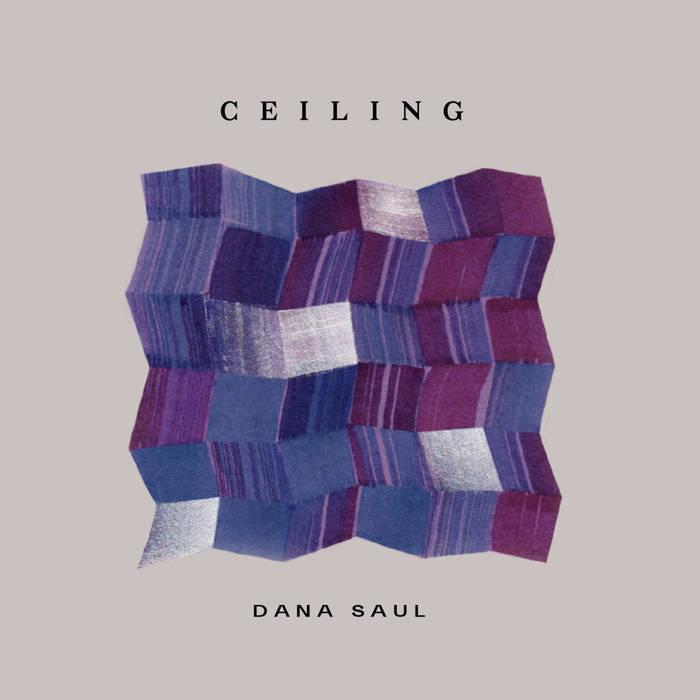 DANA SAUL - Ceiling cover