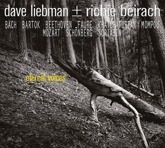 DAVE LIEBMAN - Dave Liebman & Richie Beirach : Eternal Voices cover
