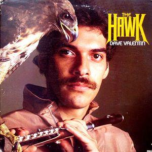 DAVE VALENTIN - The Hawk cover