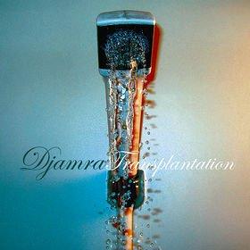 DJAMRA - Transplantation cover