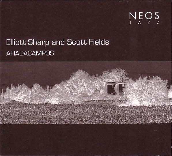 ELLIOTT SHARP - Afiadacampos (with Scott Fields) cover