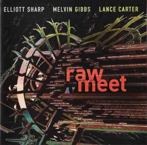 ELLIOTT SHARP - Raw Meet (with Melvin Gibbs / Lance Carter) cover