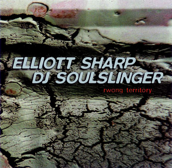 ELLIOTT SHARP - Rwong Territory (with DJ Soul Slinger) cover