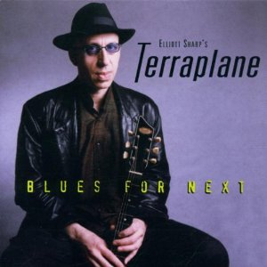 ELLIOTT SHARP - Blues for Next cover