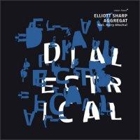 ELLIOTT SHARP - Elliott Sharp Aggregat feat. Barry Altschul : Dialectrical cover