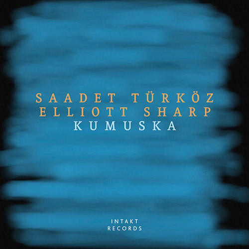 ELLIOTT SHARP - Saadet  Turkoz / Elliott Sharp : Kumuska cover