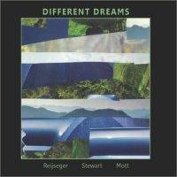 ERNST REIJSEGER - Ernst Reijseger, David Mott, Jesse Stewart : Different Dreams cover