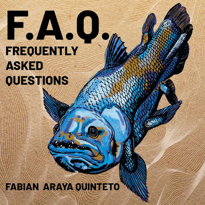FABIÁN ARAYA - (F.A.Q.) Frequently Asked Questions cover