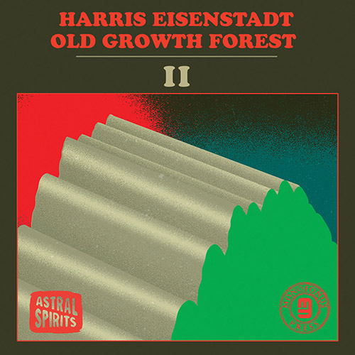 HARRIS EISENSTADT - Old Growth Forest II cover