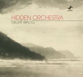 HIDDEN ORCHESTRA - Night Walks cover