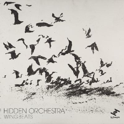 HIDDEN ORCHESTRA - Wingbeats cover