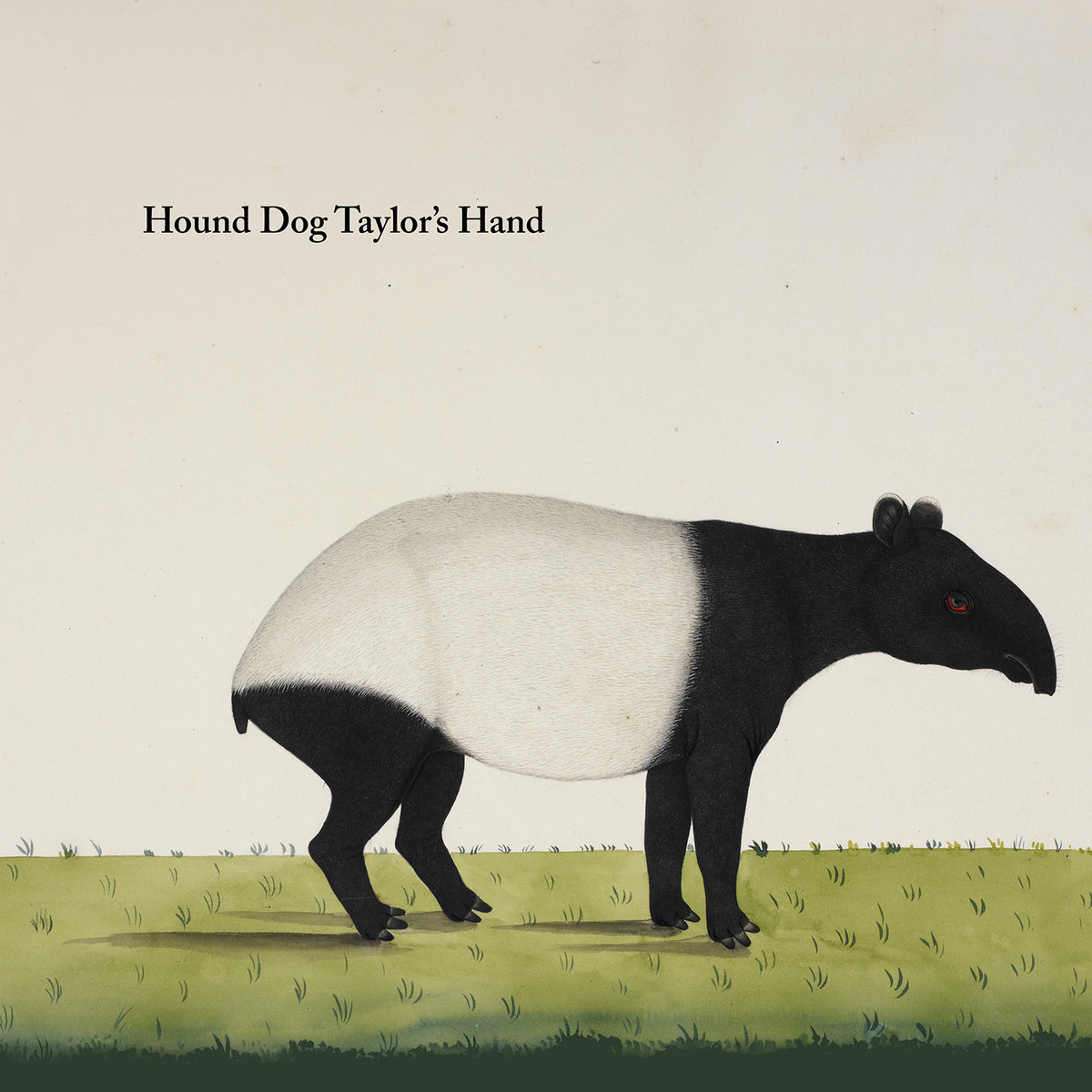 HOUND DOG TAYLOR'S HAND - Hound Dog Taylor's Hand (2019) cover