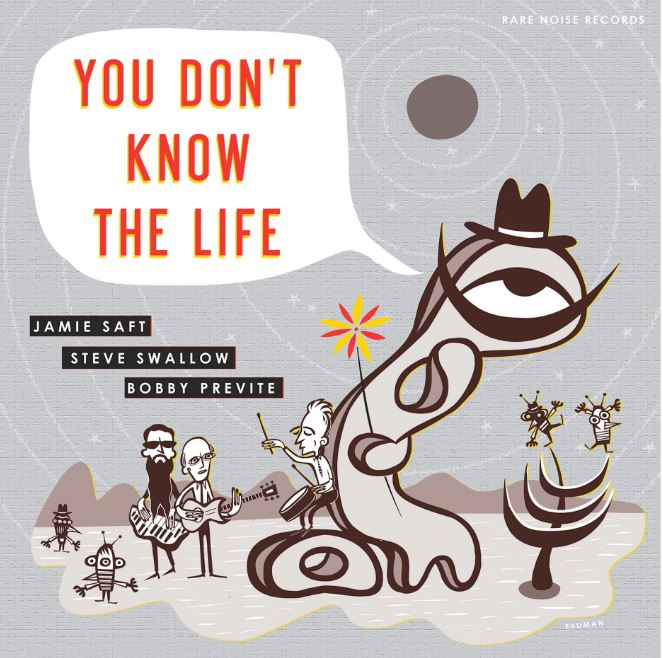 JAMIE SAFT - You Don't Know The Life cover