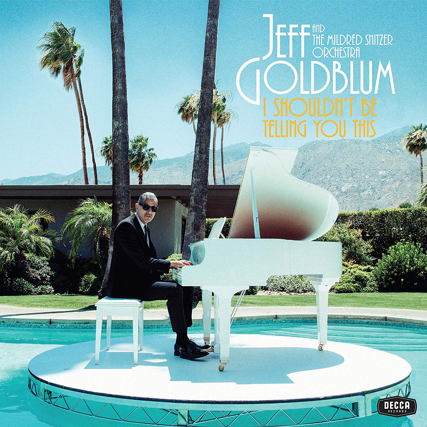 JEFF GOLDBLUM - I Shouldn't Be Telling You This cover
