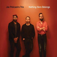 JOE POLICASTRO - Joe Policastro Trio : Nothing Here Belongs cover