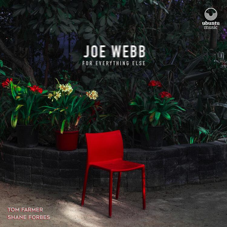 JOE WEBB - For Everything Else cover