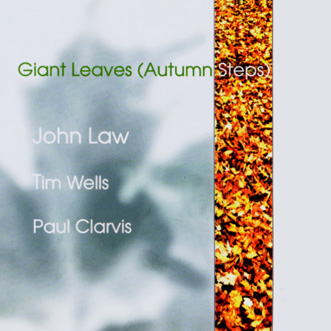 JOHN LAW (PIANO) - Giant Leaves (Autumn Steps) cover