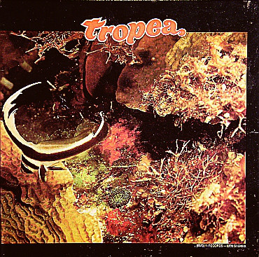 JOHN TROPEA - Tropea (aka Guitarra Galáctica) cover