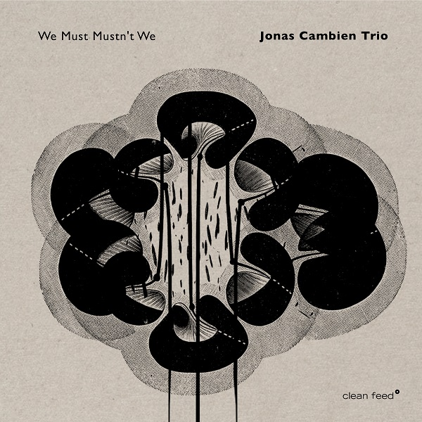 JONAS CAMBIEN - Jonas Cambien Trio : We Must Mustnt We cover