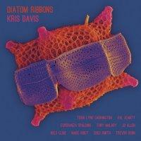 KRIS DAVIS - Diatom Ribbons cover