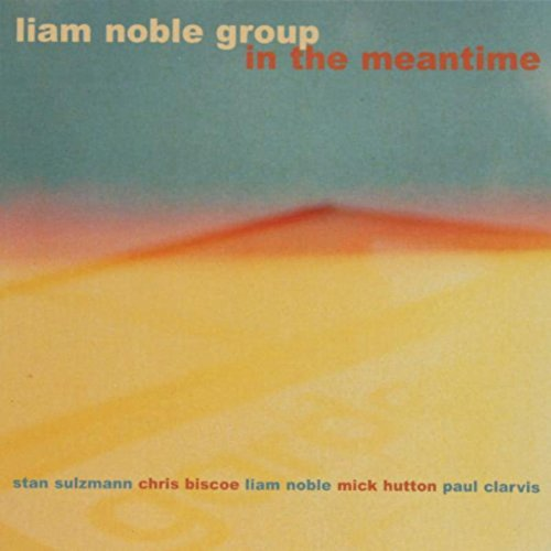 LIAM NOBLE - Liam Noble Group : In The Meantime cover