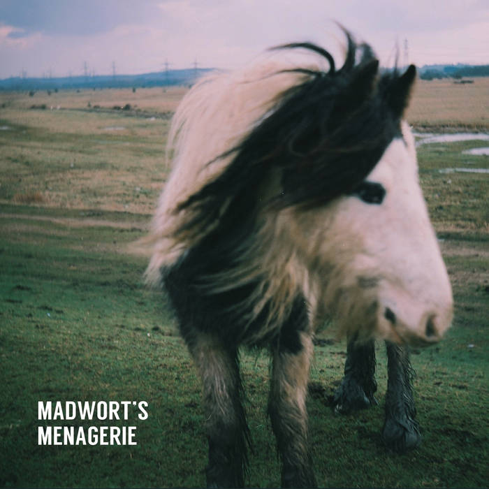 TOM WARD - Madworts Menagerie cover