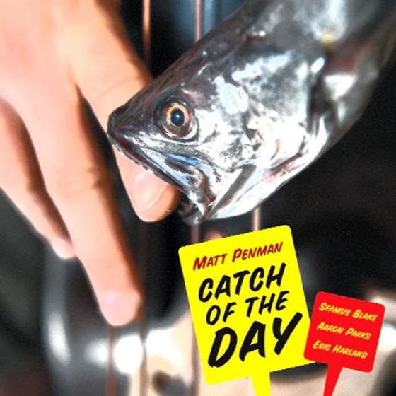 MATT PENMAN - Catch of the Day cover