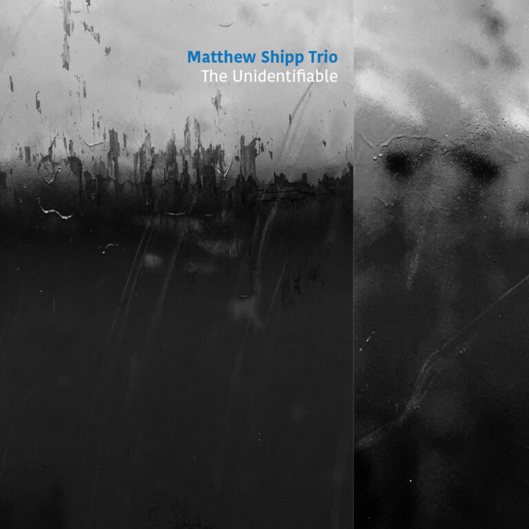 MATTHEW SHIPP - The Unidentifiable cover