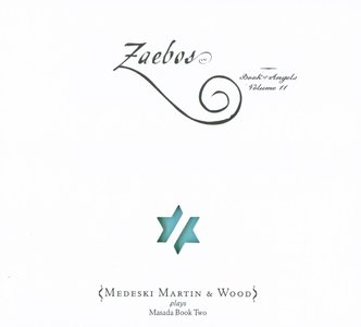 MEDESKI MARTIN AND WOOD - Zaebos: Book of Angels, Volume 11 cover