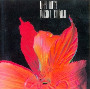 MICHEL CAMILO - Why Not? cover
