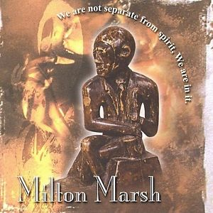 MILTON MARSH - We Are Not Separate From Spirit We Are In It. cover