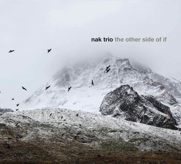 NAK TRIO - The Other Side Of If cover