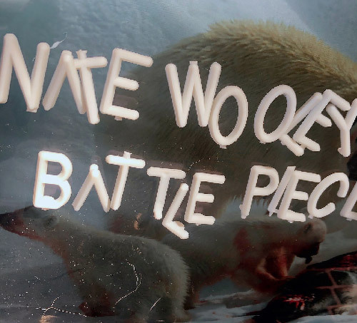 NATE WOOLEY - Battle Pieces 4 cover