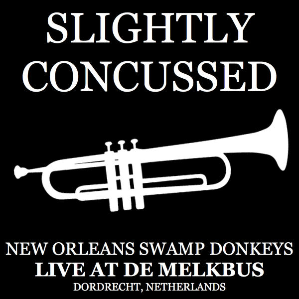 NEW ORLEANS SWAMP DONKEYS - Slightly Concussed cover