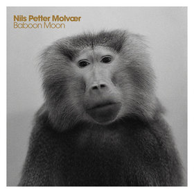 NILS PETTER MOLVÆR - Baboon Moon cover